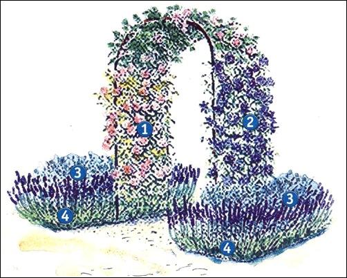 Голубая арка