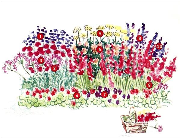 Цветники в красном цвете (две схемы)