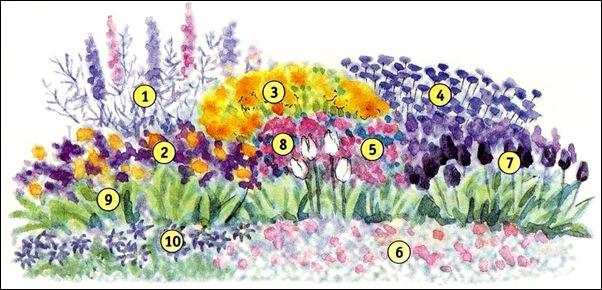 Схема цветника Весенняя пастель