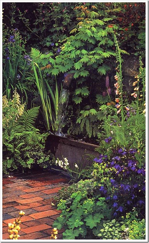 Заросли в тени сада - наперстянка, водосбор, манжетка и герани по японским кленом