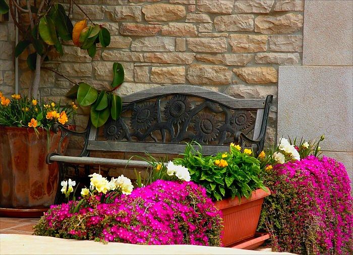 Веранды с цветами фото