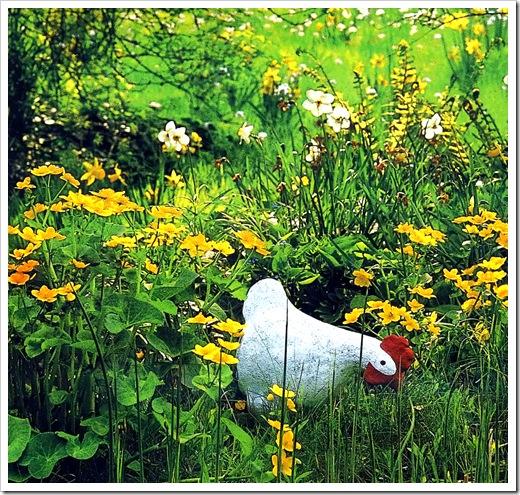 Калужница болотная на лужайке