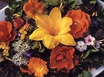 Съедобные цветки