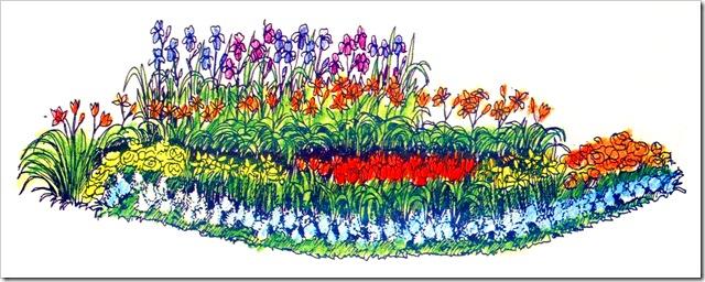 Схема контрастного цветника