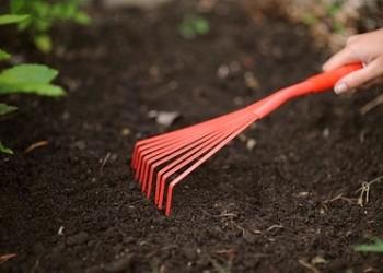 Апрель для садовода