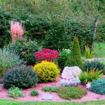 Как защитить растения от ветра