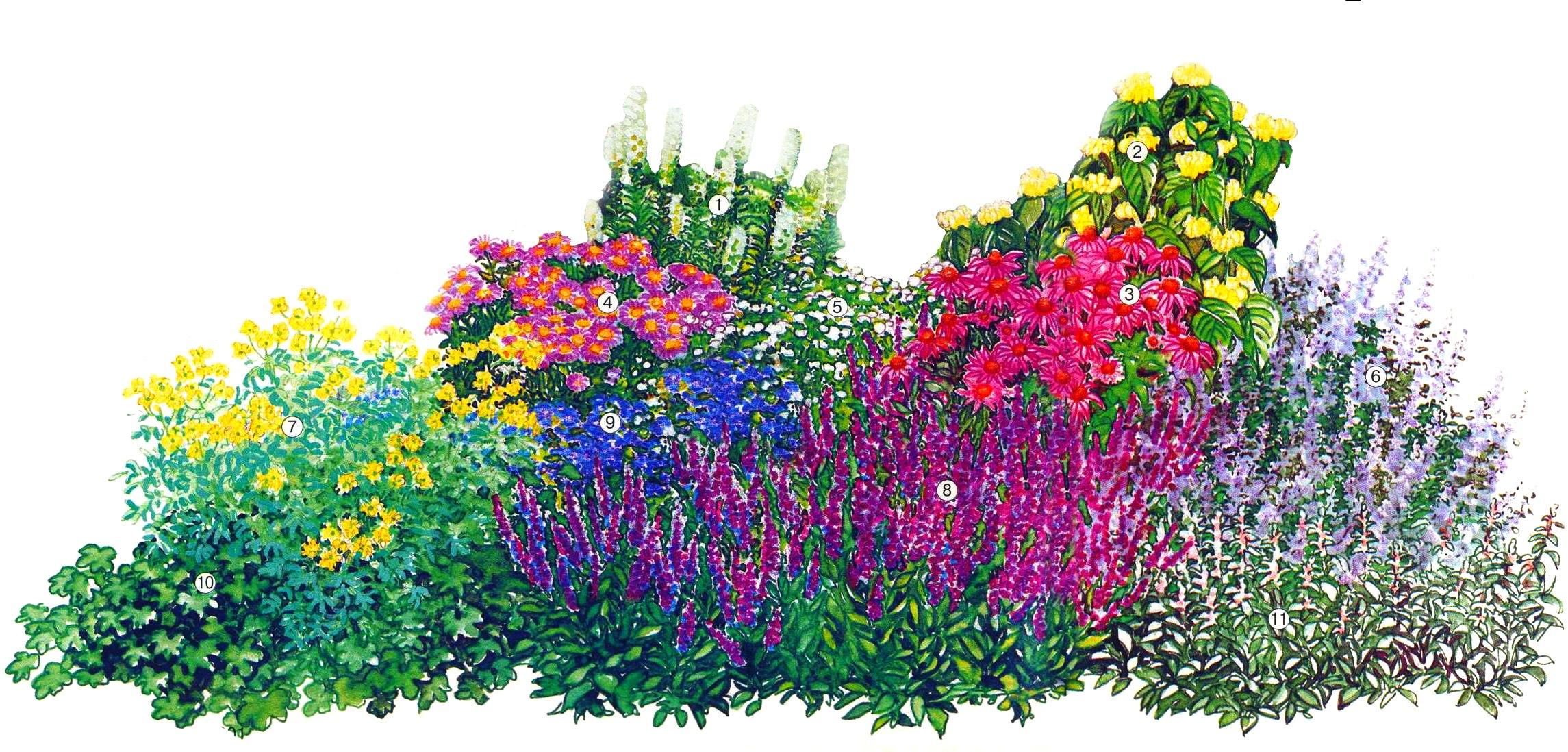 8 Марта Композиции из сухоцветов Группа Садовые цветы и
