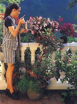 Полив балконных цветов