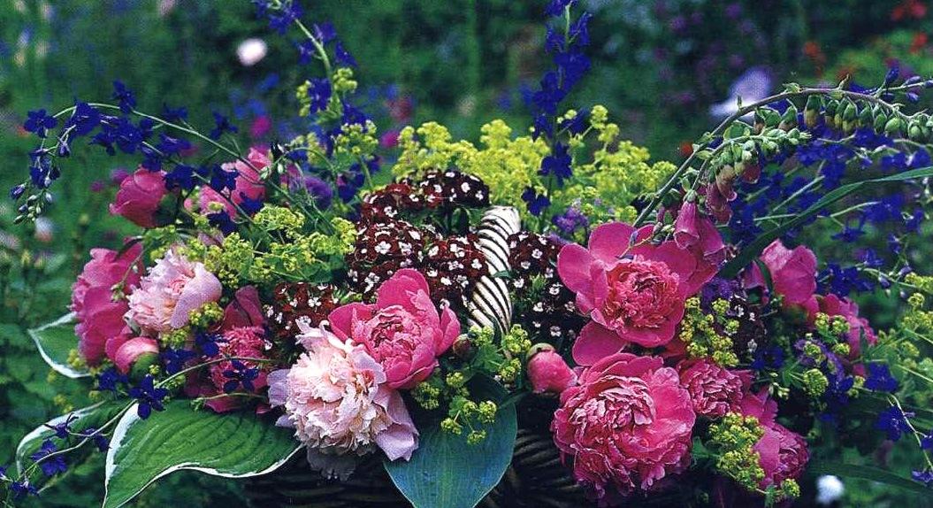 Цветочный форум на floralworldru - главная страница