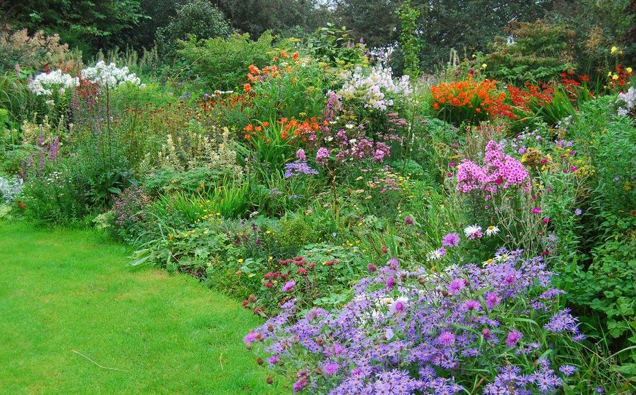 Природа требует от цветоводов