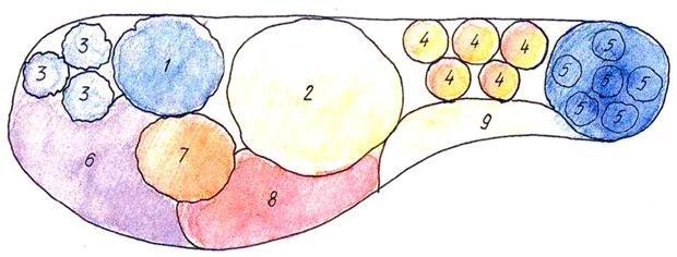 Сухой участок на солнце - схема