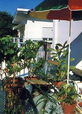 Притенение балконных цветов