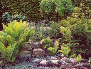 Сады из камней в японии 25 фотографий