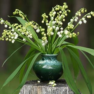 Ландыши  - язык цветов