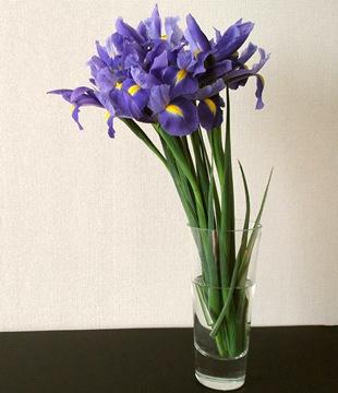 Ирисы  - язык цветов