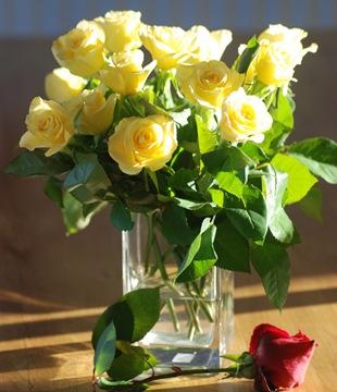 Желтая роза  - язык цветов