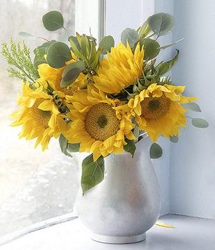 Подсолнухи в вазе - язык цветов