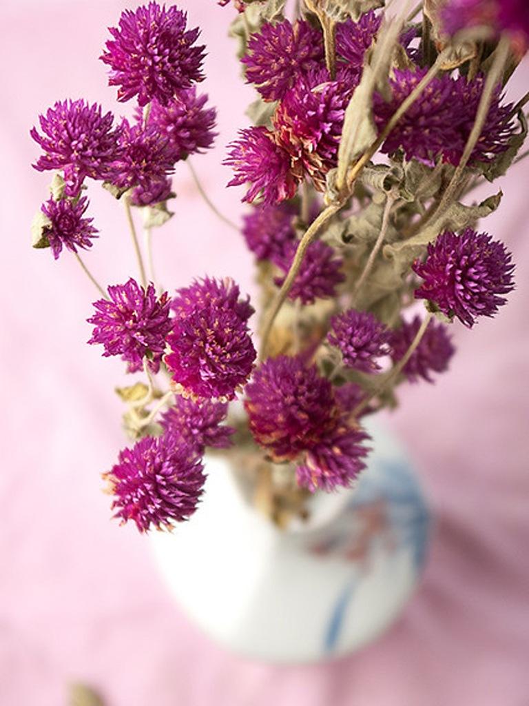 Любимые цветы своими руками