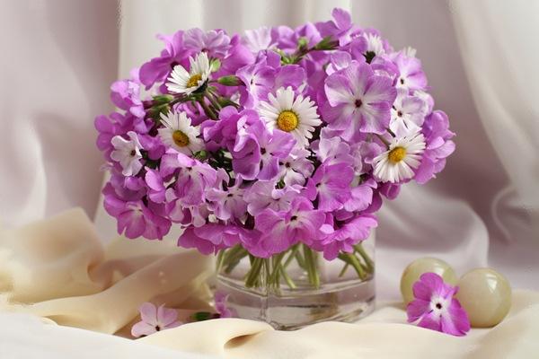 Букет цветов - флоксы и ромашки