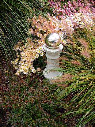 Хризантемы и злаки