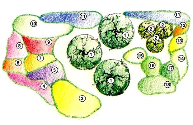 Схема мискбордера для деревенского сада