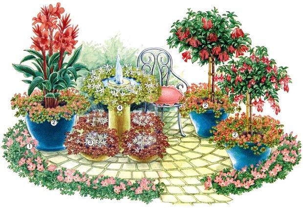 Кислица в саду и на балконе