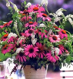Букет садовых цветов