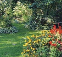 Декорирование сада зеленчуком