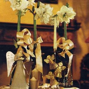 Гиппеаструмы цветущие к празднику