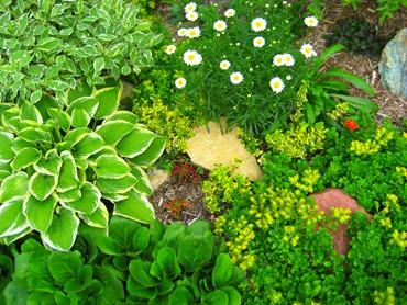 Миниатюрная садовая композиция